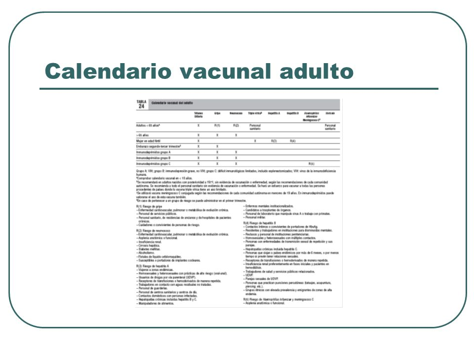 Calendario vacunal adulto