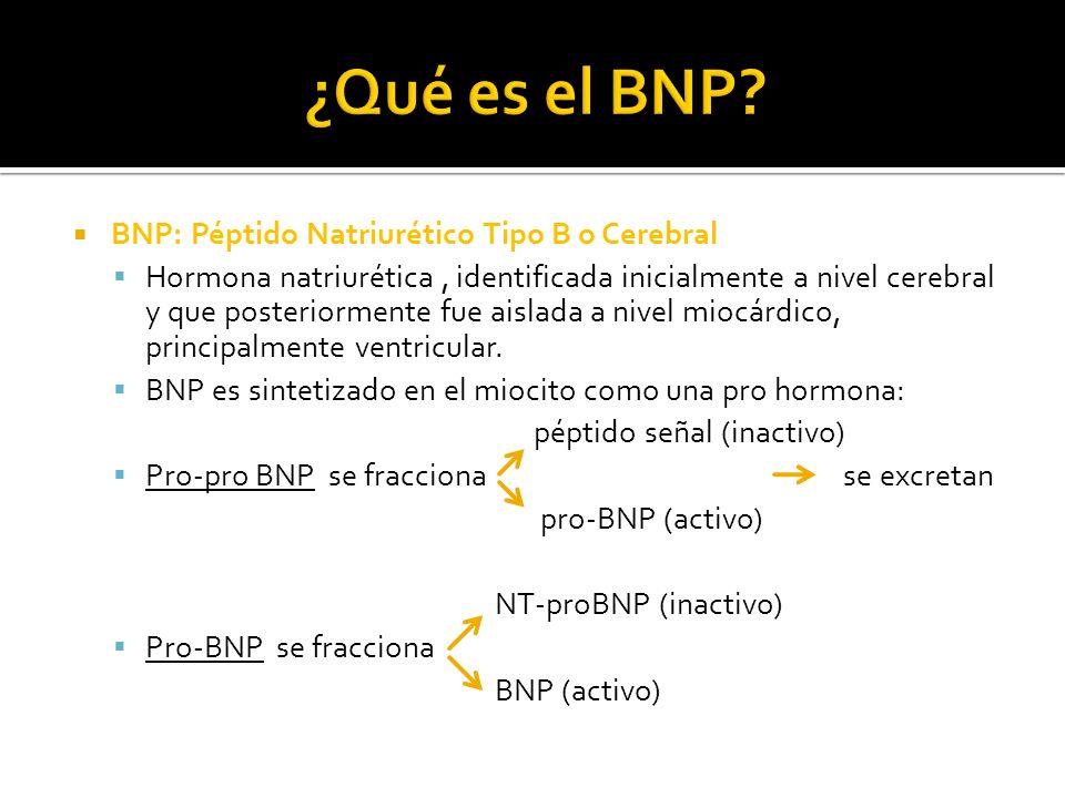 ¿Qué es el BNP BNP: Péptido Natriurético Tipo B o Cerebral