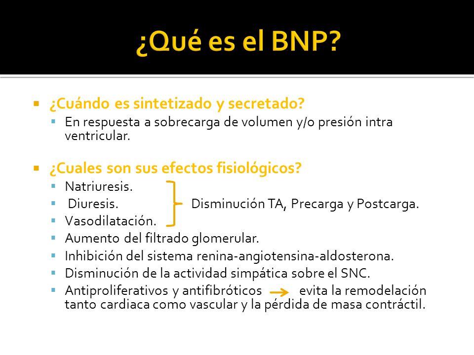 ¿Qué es el BNP ¿Cuándo es sintetizado y secretado