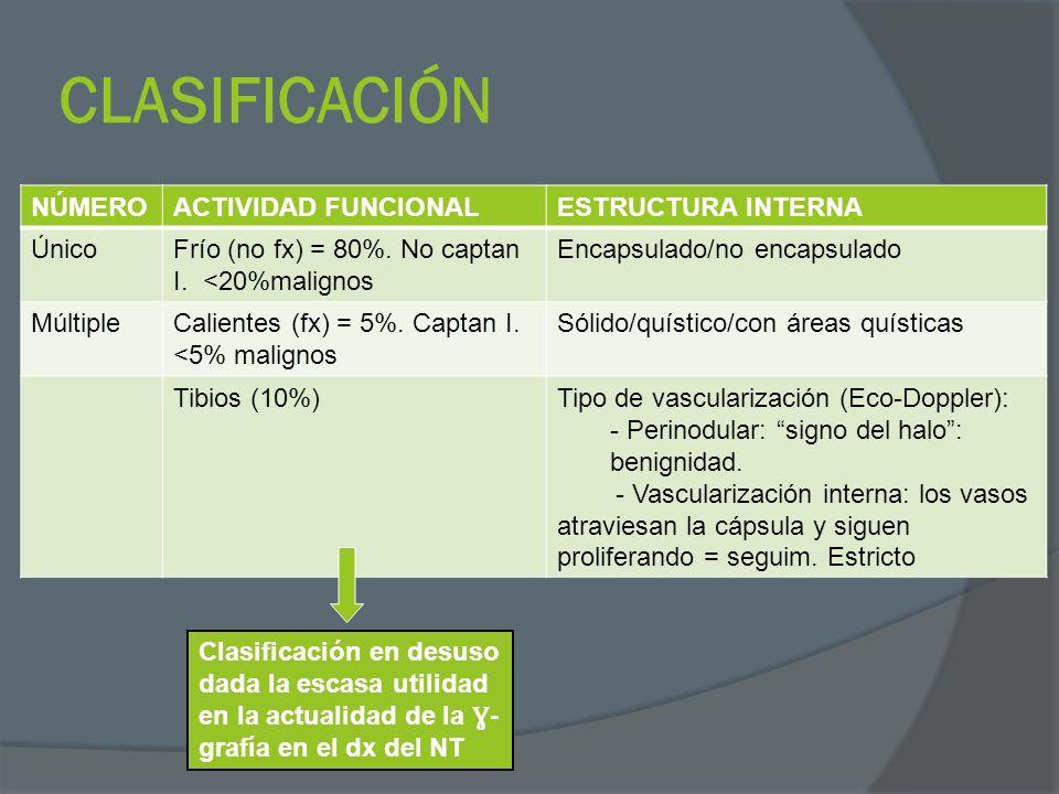 CLASIFICACIÓN NÚMERO ACTIVIDAD FUNCIONAL ESTRUCTURA INTERNA Único