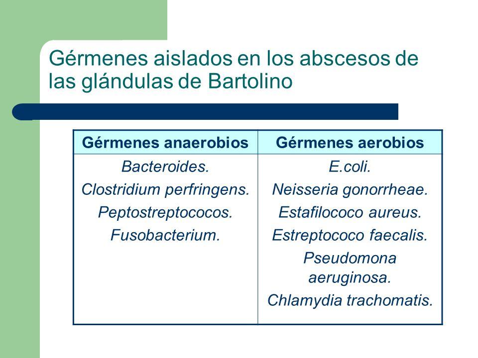 Gérmenes aislados en los abscesos de las glándulas de Bartolino