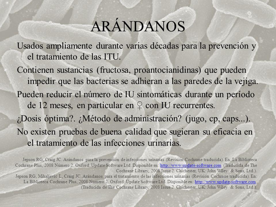 ARÁNDANOS