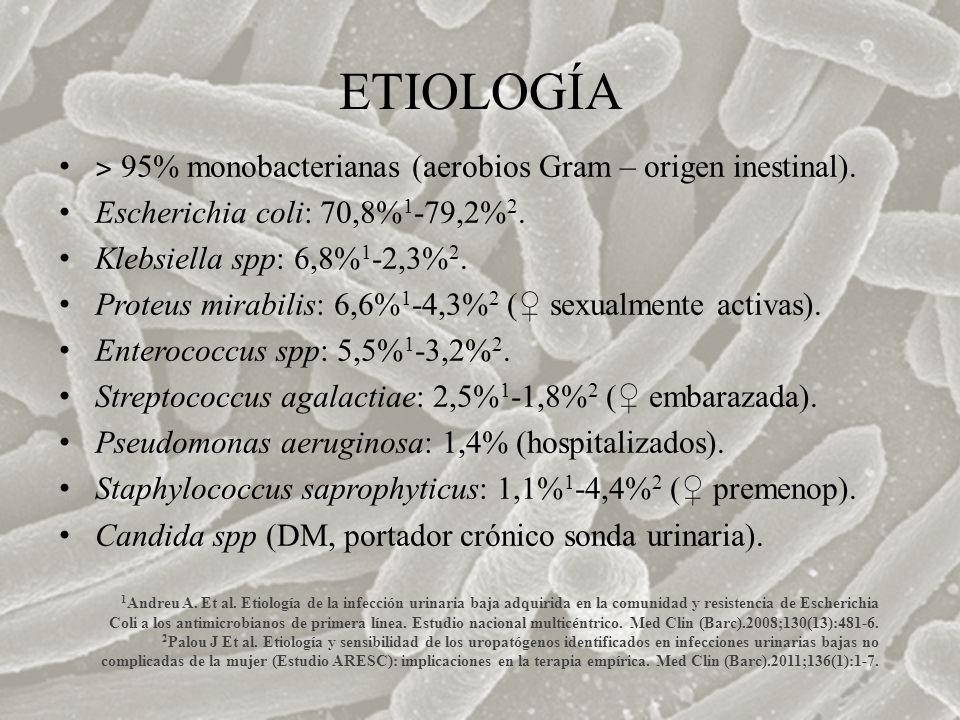 ETIOLOGÍA ˃ 95% monobacterianas (aerobios Gram – origen inestinal).