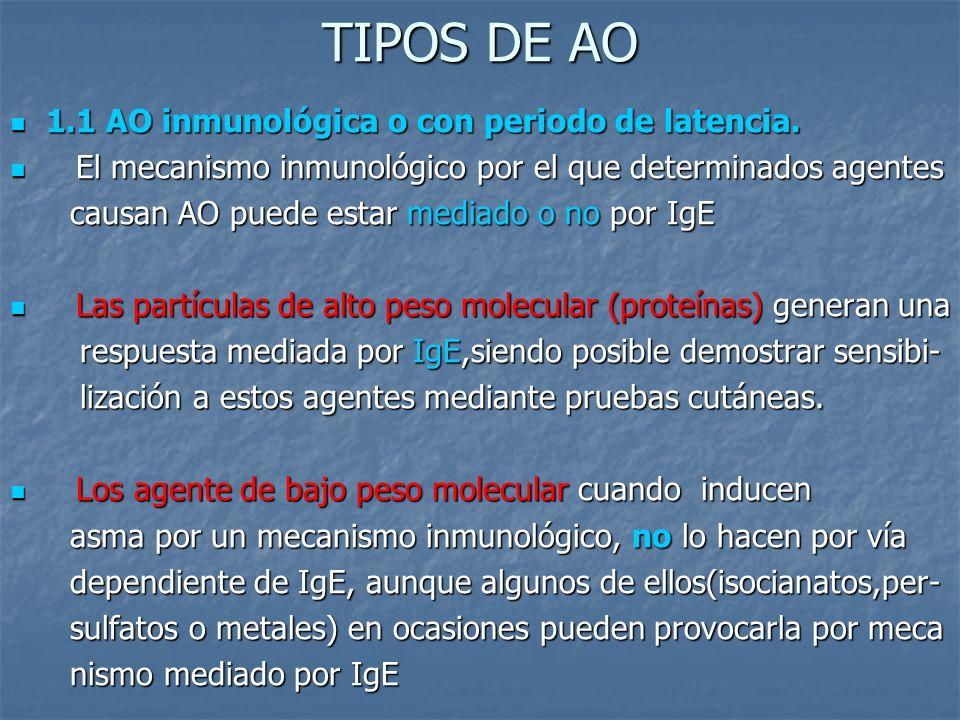 TIPOS DE AO 1.1 AO inmunológica o con periodo de latencia.