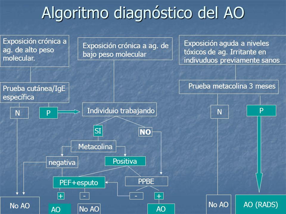 Algoritmo diagnóstico del AO