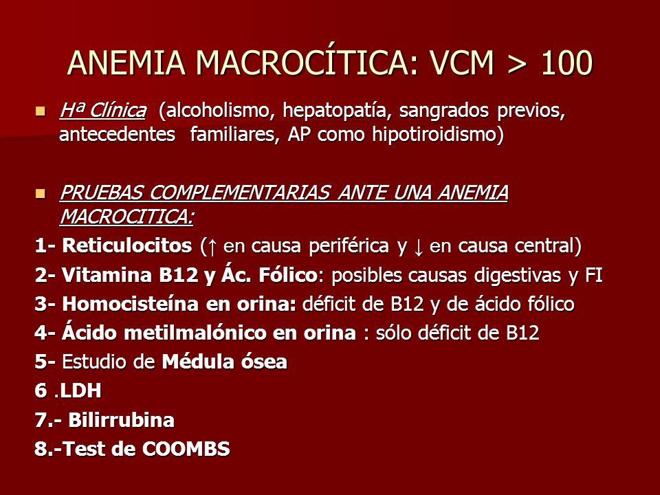 ANEMIA MACROCÍTICA: VCM > 100