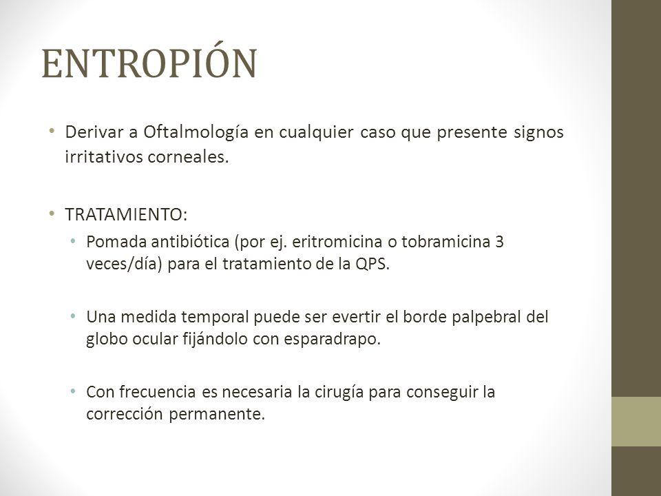 ENTROPIÓN Derivar a Oftalmología en cualquier caso que presente signos irritativos corneales. TRATAMIENTO: