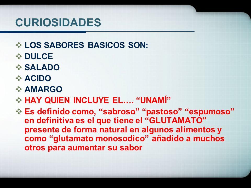 CURIOSIDADES LOS SABORES BASICOS SON: DULCE SALADO ACIDO AMARGO