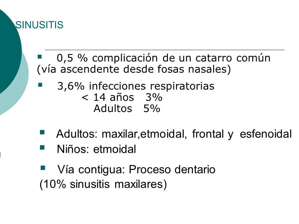 Adultos: maxilar,etmoidal, frontal y esfenoidal Niños: etmoidal