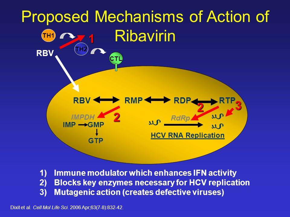 Proposed Mechanisms of Action of Ribavirin