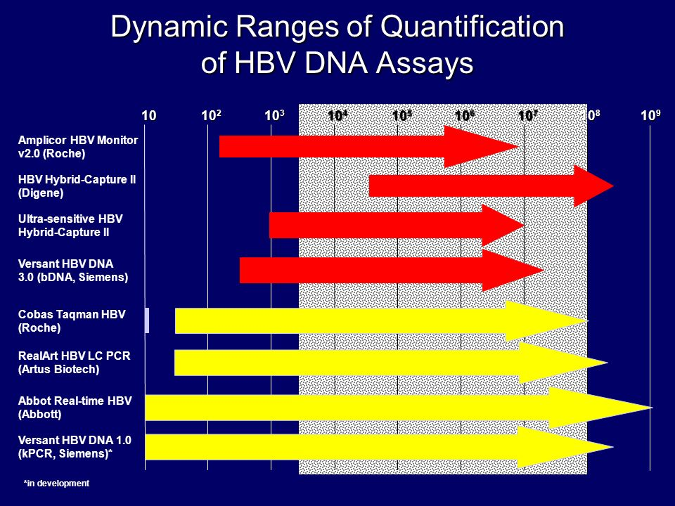 Dynamic Ranges of Quantification of HBV DNA Assays