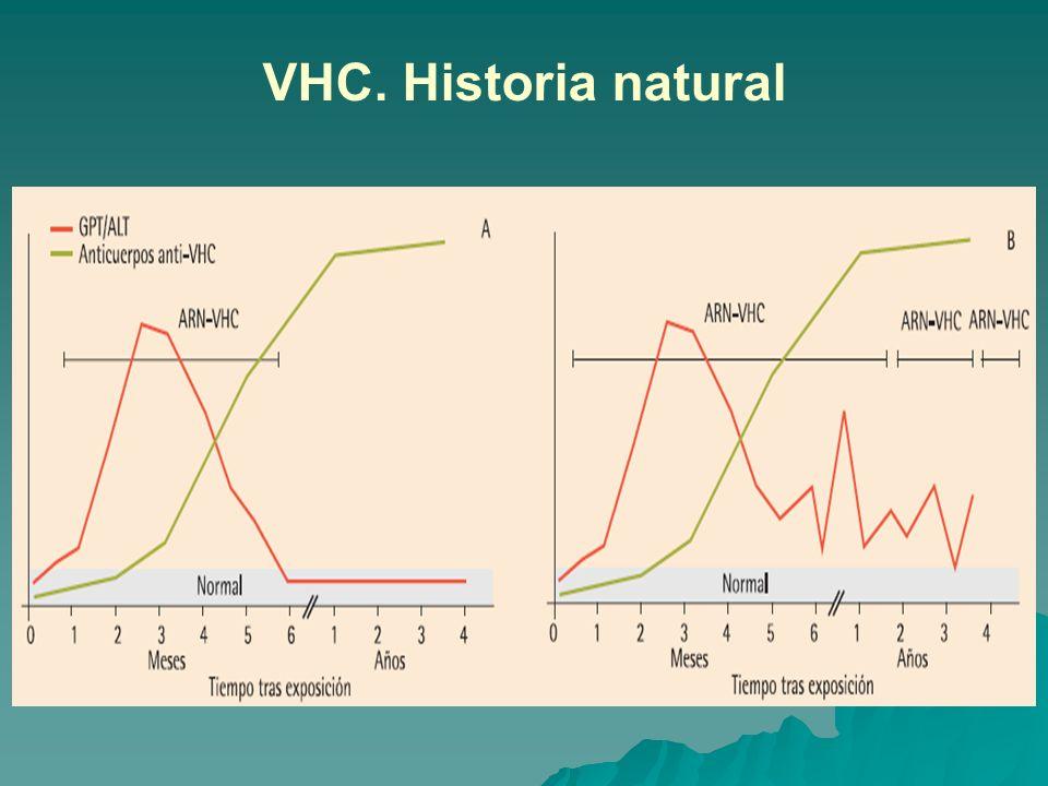 VHC. Historia natural