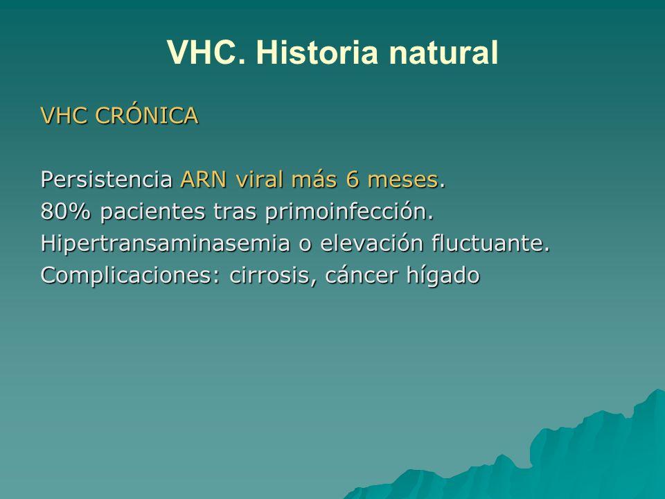 VHC. Historia natural VHC CRÓNICA Persistencia ARN viral más 6 meses.