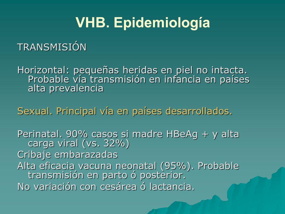 VHB. Epidemiología TRANSMISIÓN
