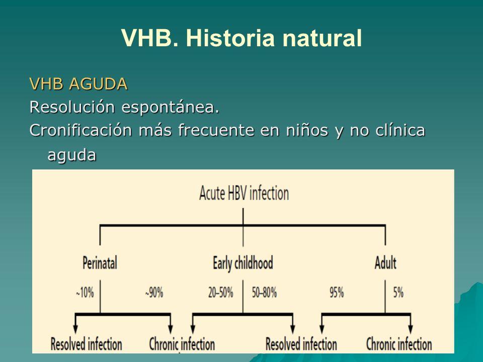 VHB. Historia natural VHB AGUDA Resolución espontánea.