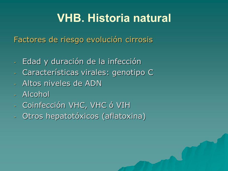 VHB. Historia natural Factores de riesgo evolución cirrosis
