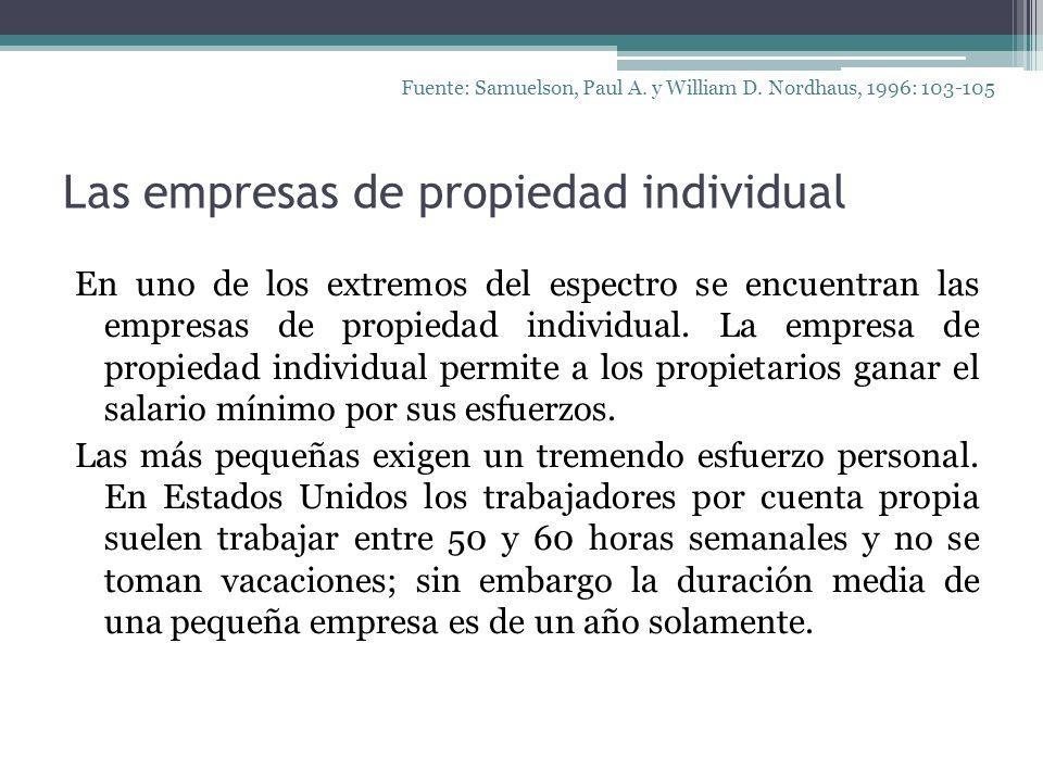 Las empresas de propiedad individual