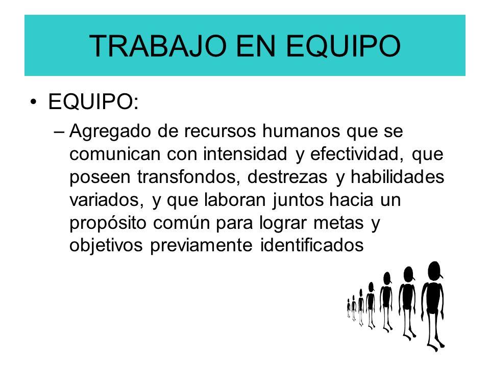 TRABAJO EN EQUIPO EQUIPO: