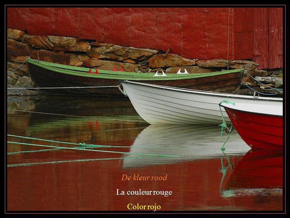 De kleur rood La couleur rouge Color rojo