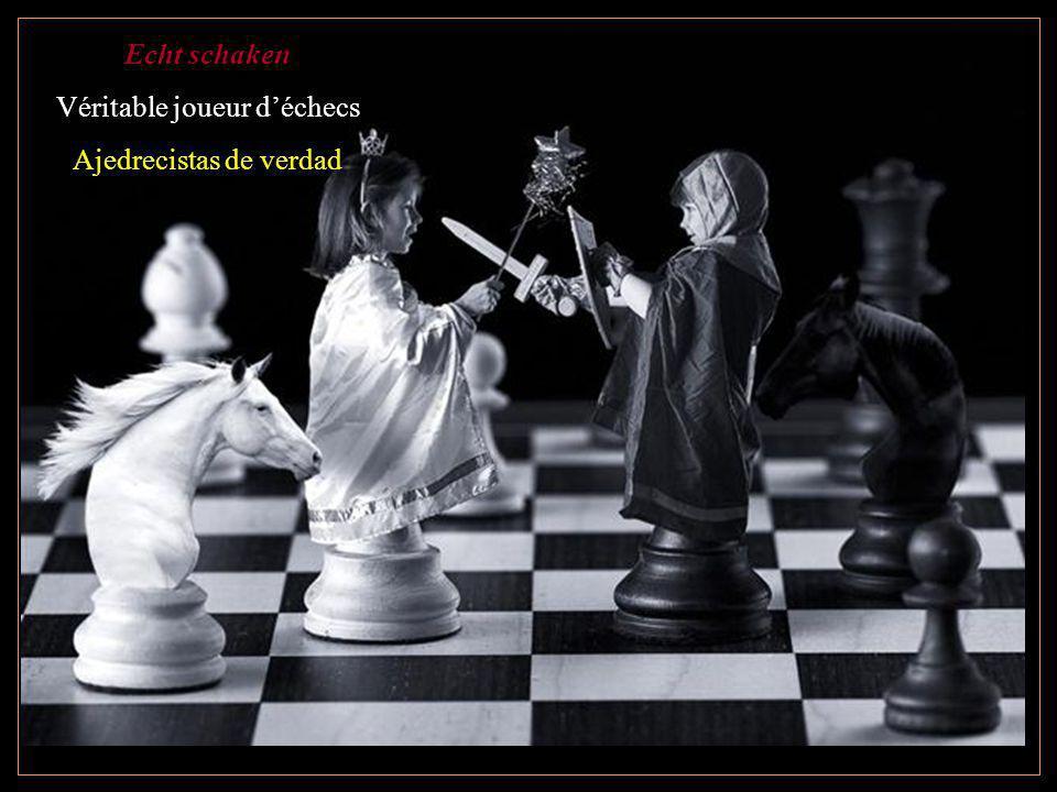 Véritable joueur d'échecs Ajedrecistas de verdad