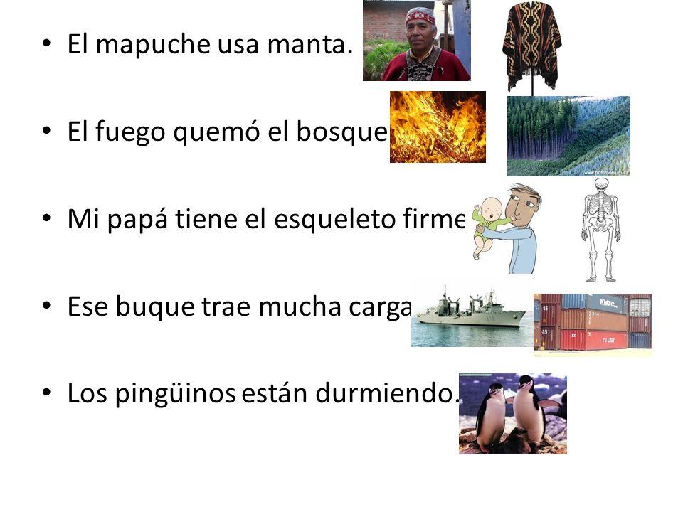 El mapuche usa manta. El fuego quemó el bosque. Mi papá tiene el esqueleto firme. Ese buque trae mucha carga.