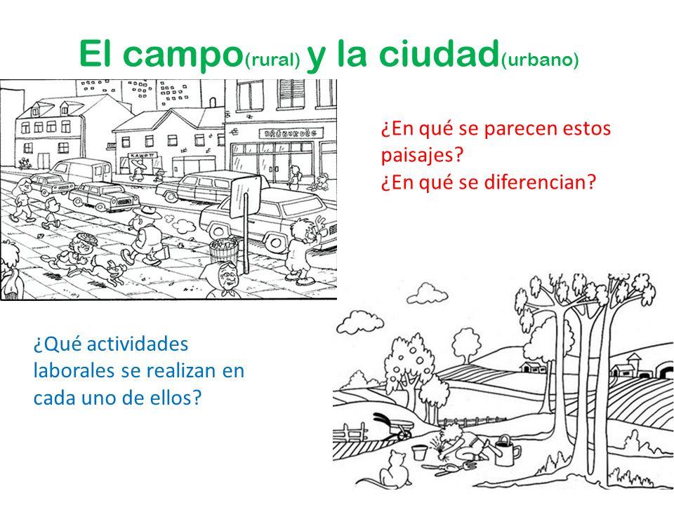 El campo(rural) y la ciudad(urbano)