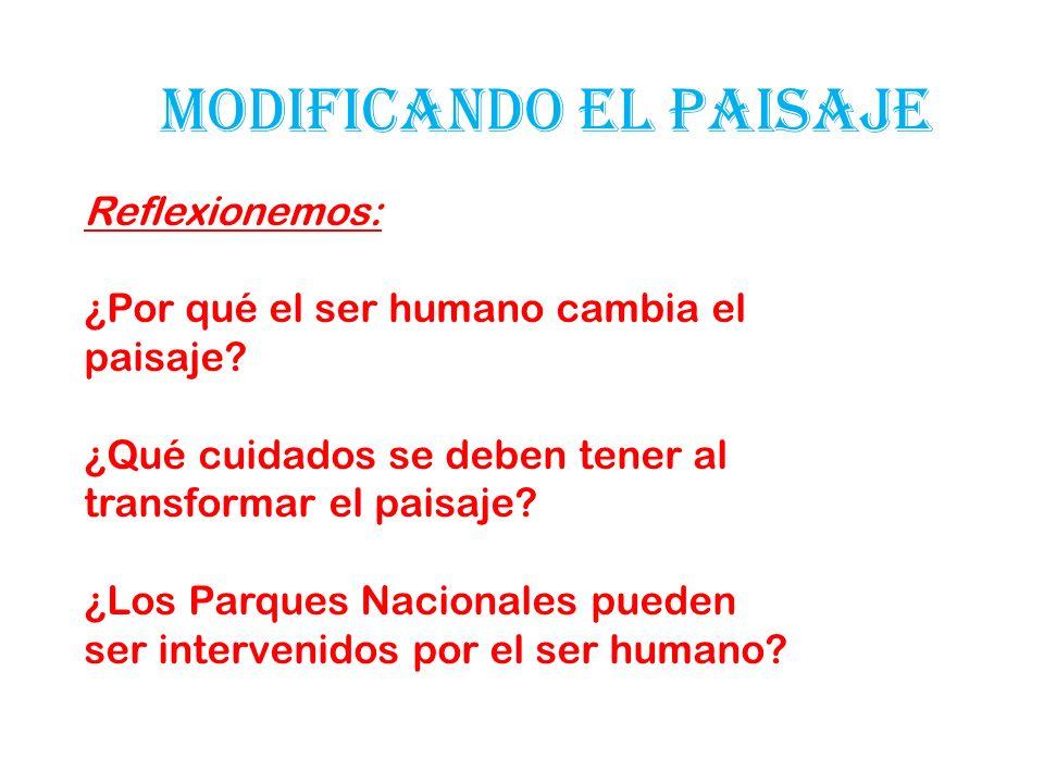 MODIFICANDO EL PAISAJE