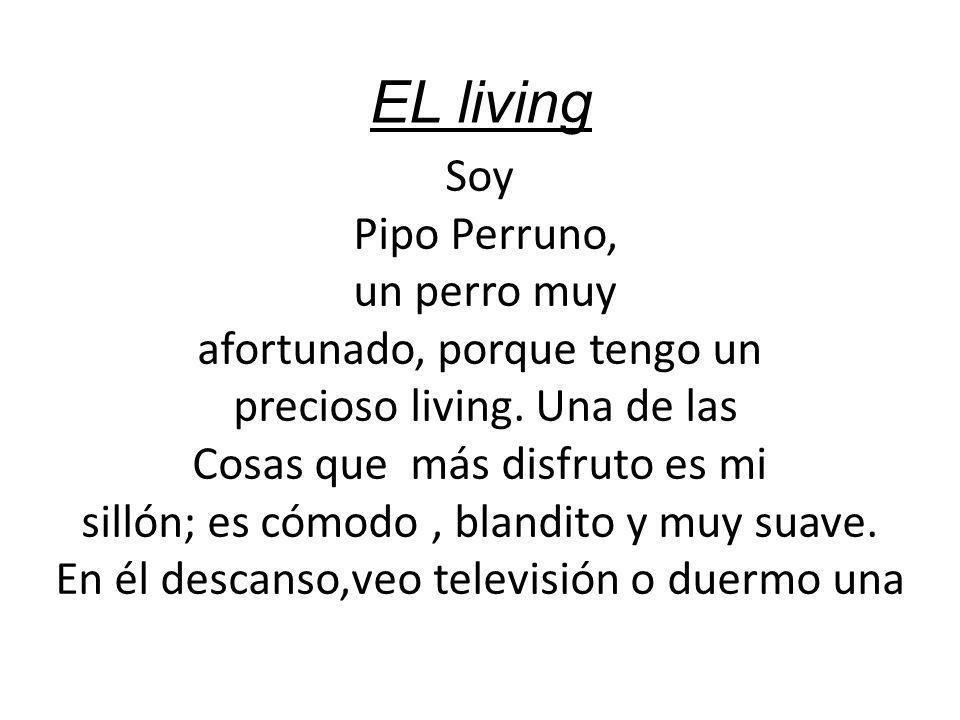 EL living Soy Pipo Perruno, un perro muy afortunado, porque tengo un