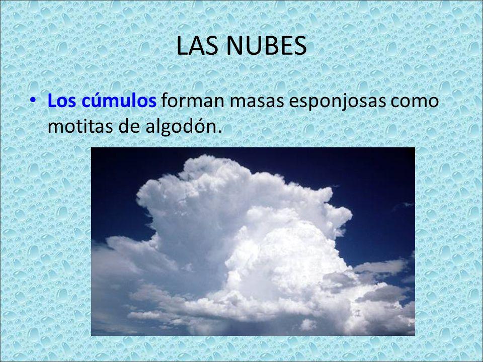 LAS NUBES Los cúmulos forman masas esponjosas como motitas de algodón.