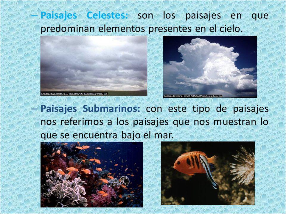 Paisajes Celestes: son los paisajes en que predominan elementos presentes en el cielo.