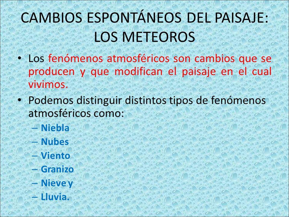CAMBIOS ESPONTÁNEOS DEL PAISAJE: LOS METEOROS