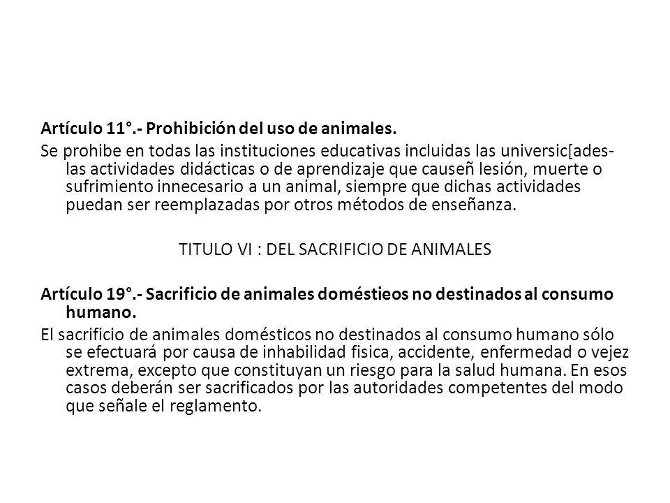 TITULO VI : DEL SACRIFICIO DE ANIMALES