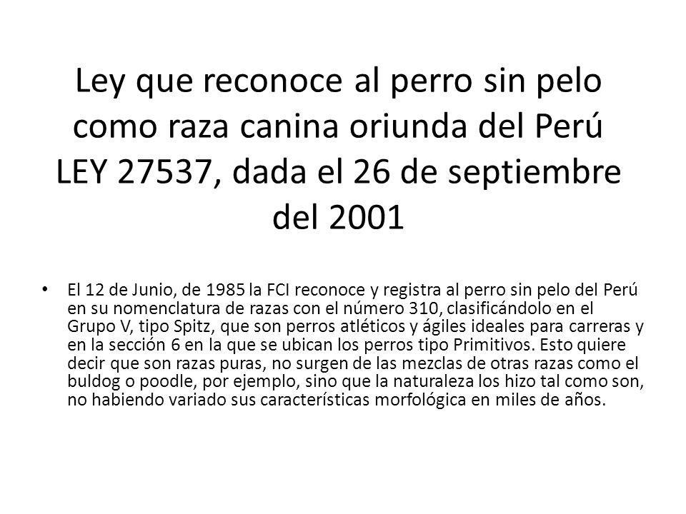 Ley que reconoce al perro sin pelo como raza canina oriunda del Perú LEY 27537, dada el 26 de septiembre del 2001