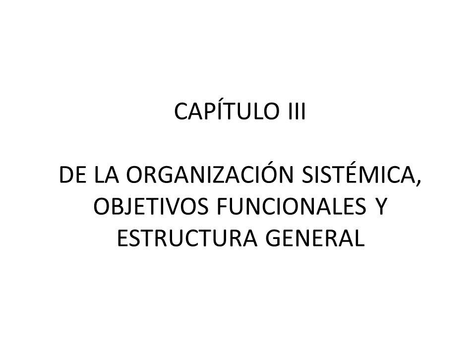 CAPÍTULO III DE LA ORGANIZACIÓN SISTÉMICA, OBJETIVOS FUNCIONALES Y ESTRUCTURA GENERAL