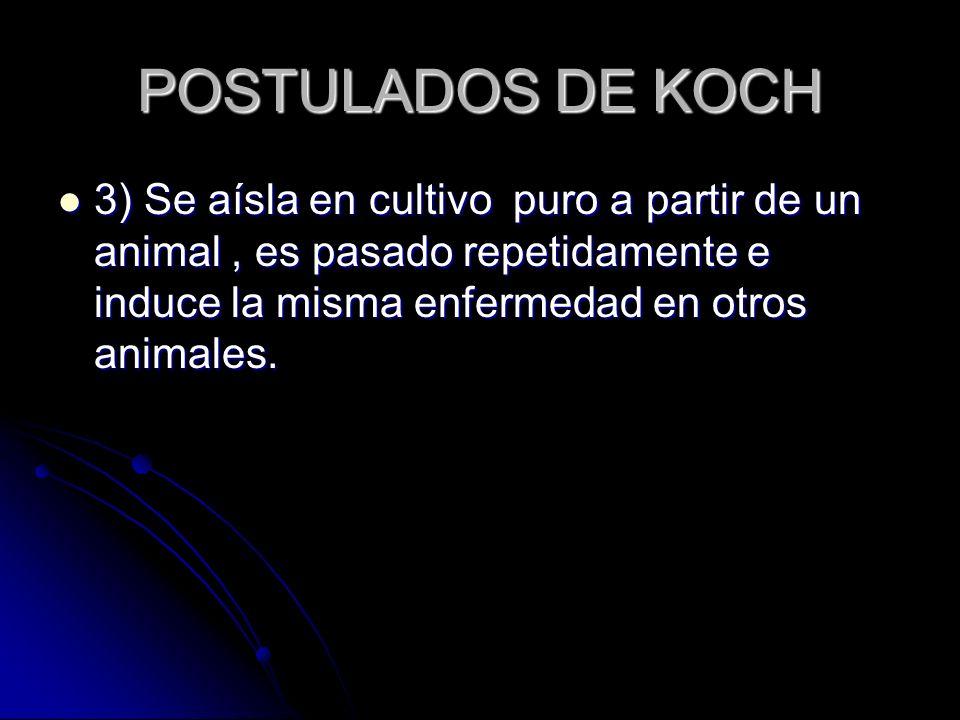 POSTULADOS DE KOCH 3) Se aísla en cultivo puro a partir de un animal , es pasado repetidamente e induce la misma enfermedad en otros animales.