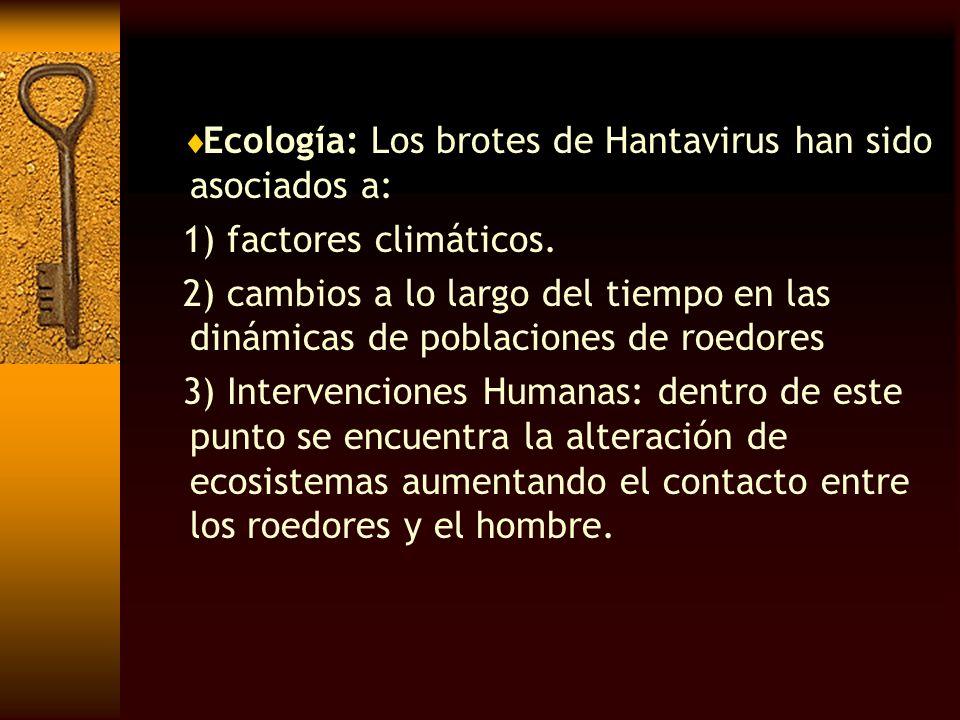 Ecología: Los brotes de Hantavirus han sido asociados a: