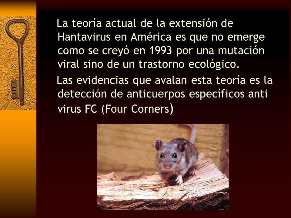 La teoría actual de la extensión de Hantavirus en América es que no emerge como se creyó en 1993 por una mutación viral sino de un trastorno ecológico.