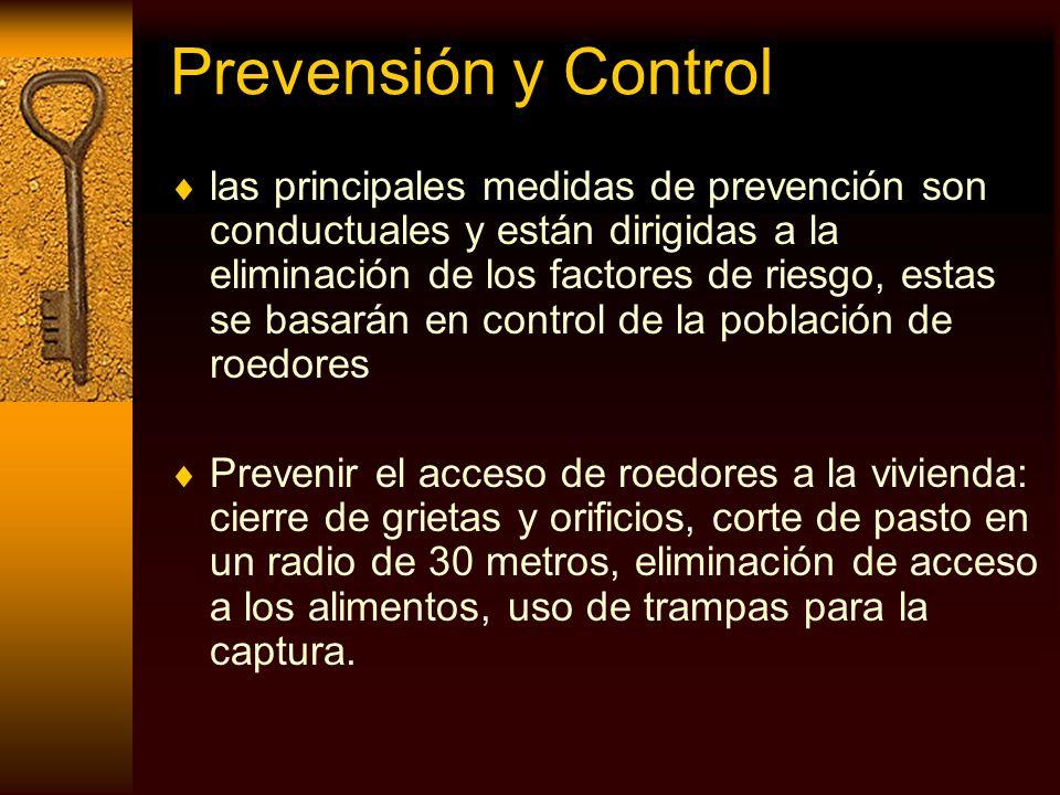 Prevensión y Control