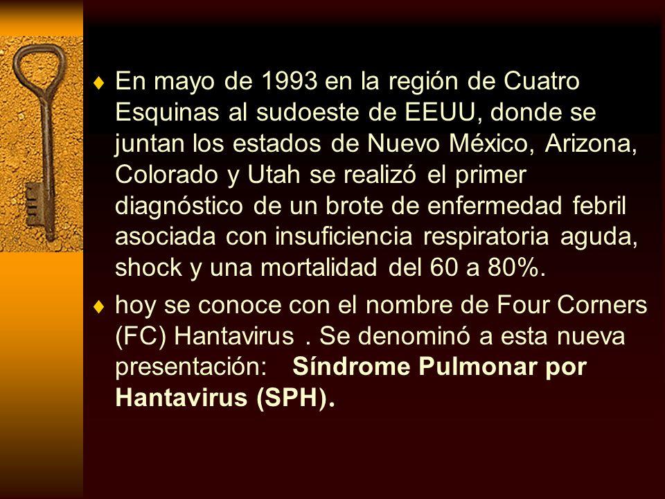 En mayo de 1993 en la región de Cuatro Esquinas al sudoeste de EEUU, donde se juntan los estados de Nuevo México, Arizona, Colorado y Utah se realizó el primer diagnóstico de un brote de enfermedad febril asociada con insuficiencia respiratoria aguda, shock y una mortalidad del 60 a 80%.