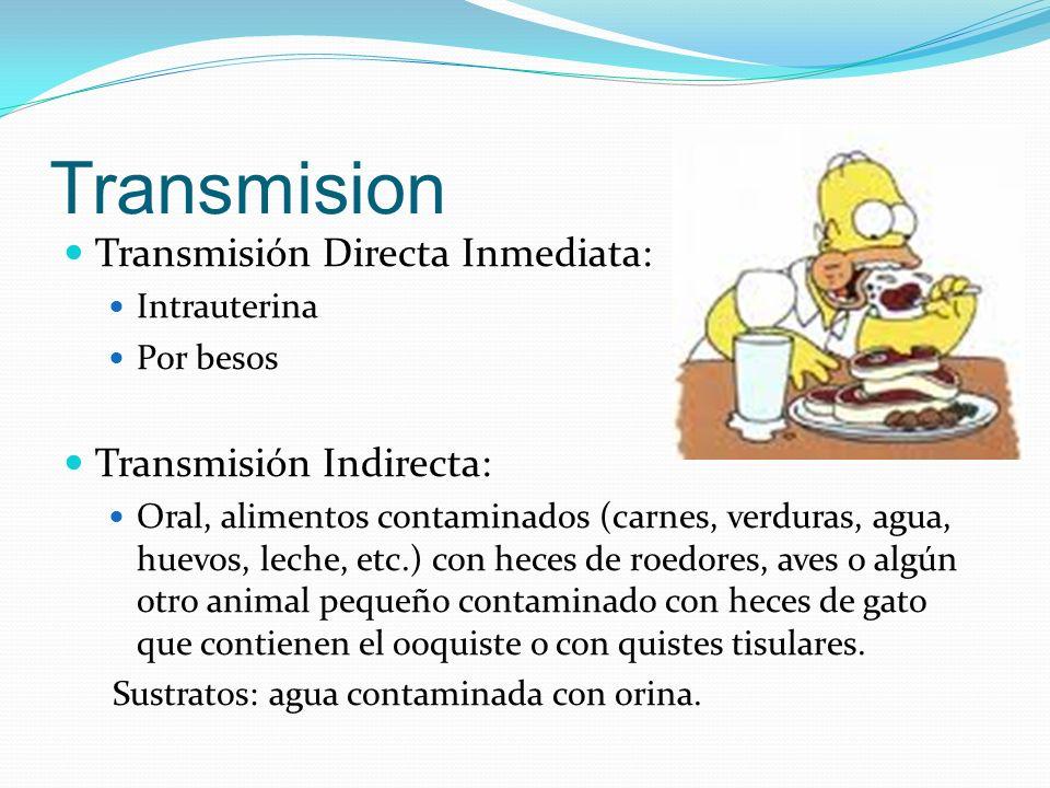 Transmision Transmisión Directa Inmediata: Transmisión Indirecta: