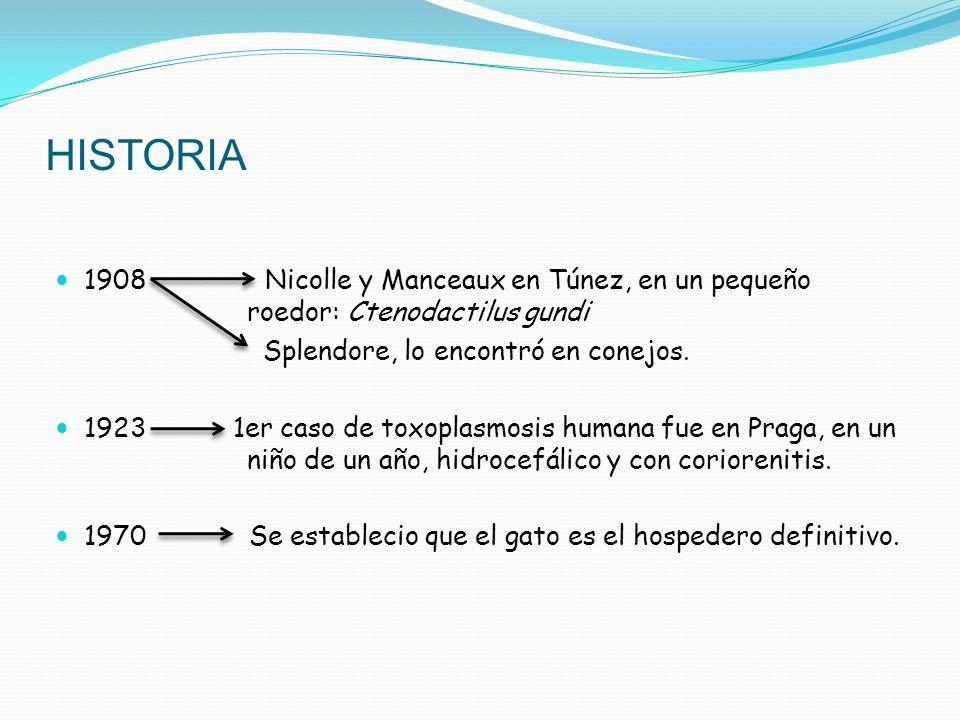 HISTORIA 1908 Nicolle y Manceaux en Túnez, en un pequeño roedor: Ctenodactilus gundi.
