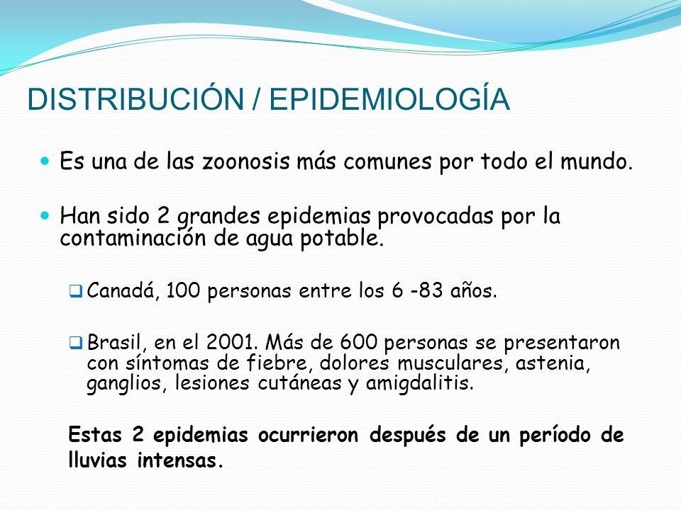 DISTRIBUCIÓN / EPIDEMIOLOGÍA