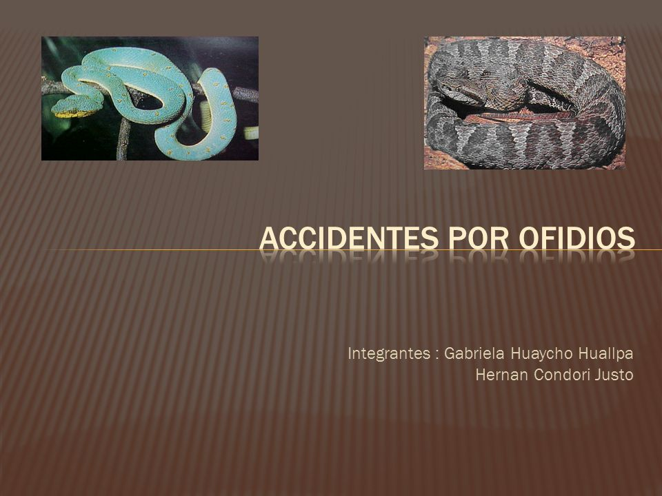 Accidentes por ofidios
