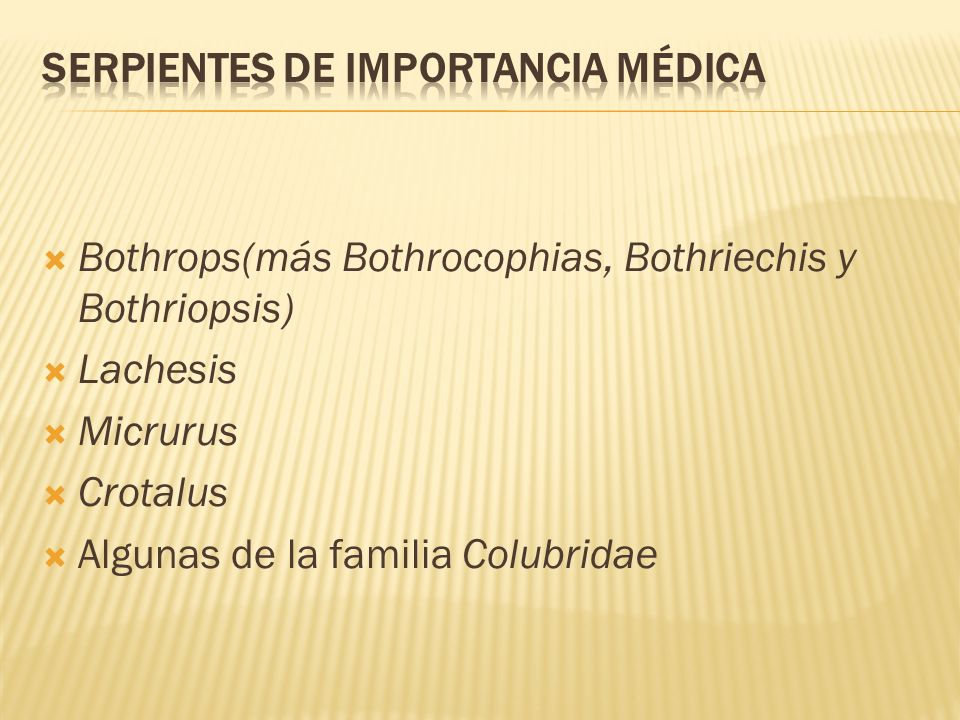 Serpientes de Importancia Médica