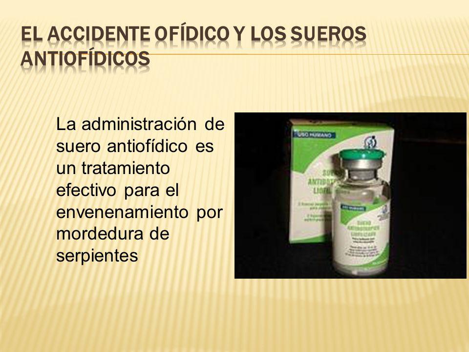 El accidente ofídico y los sueros antiofídicos