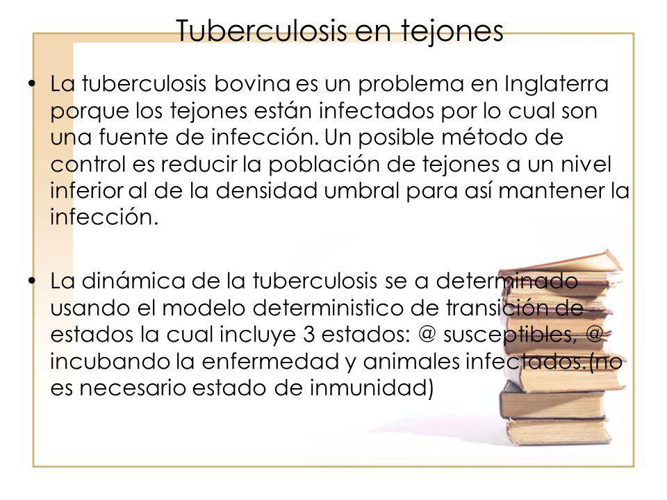 Tuberculosis en tejones