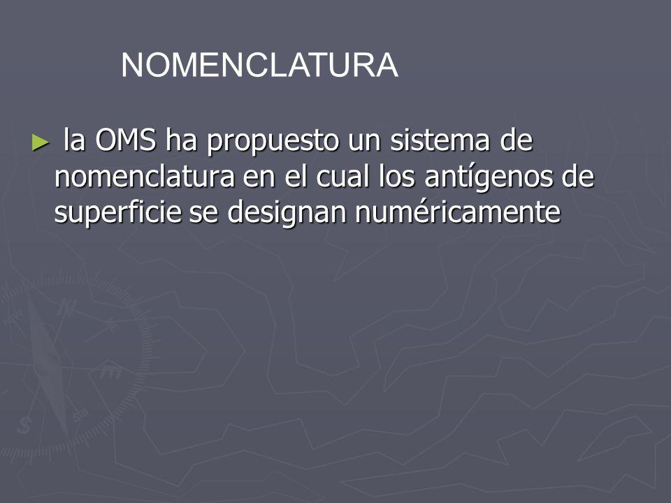 NOMENCLATURAla OMS ha propuesto un sistema de nomenclatura en el cual los antígenos de superficie se designan numéricamente.