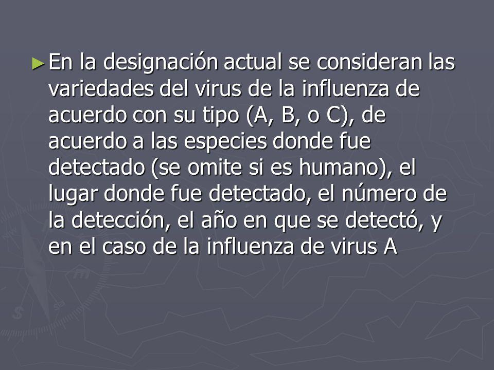 En la designación actual se consideran las variedades del virus de la influenza de acuerdo con su tipo (A, B, o C), de acuerdo a las especies donde fue detectado (se omite si es humano), el lugar donde fue detectado, el número de la detección, el año en que se detectó, y en el caso de la influenza de virus A
