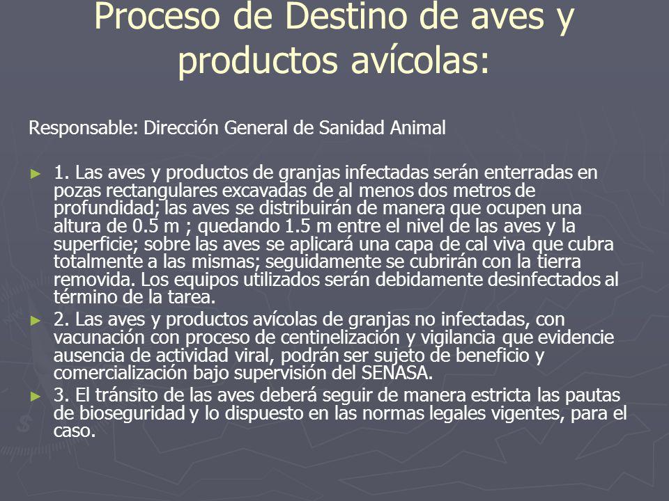 Proceso de Destino de aves y productos avícolas: