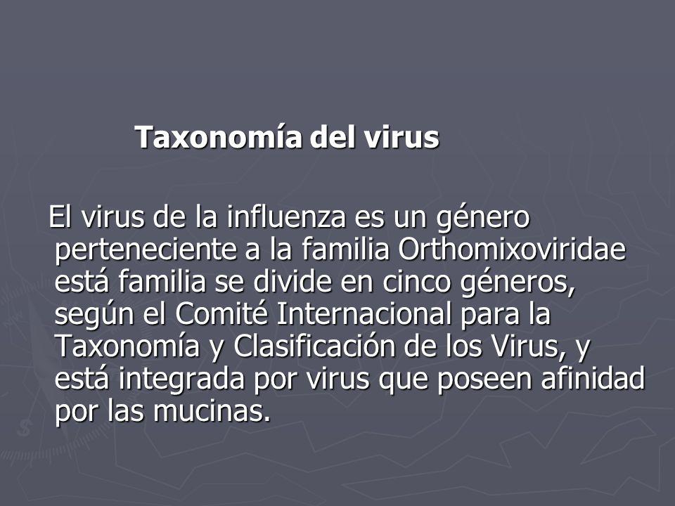 Taxonomía del virus